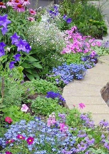 Backyard gardening plans…