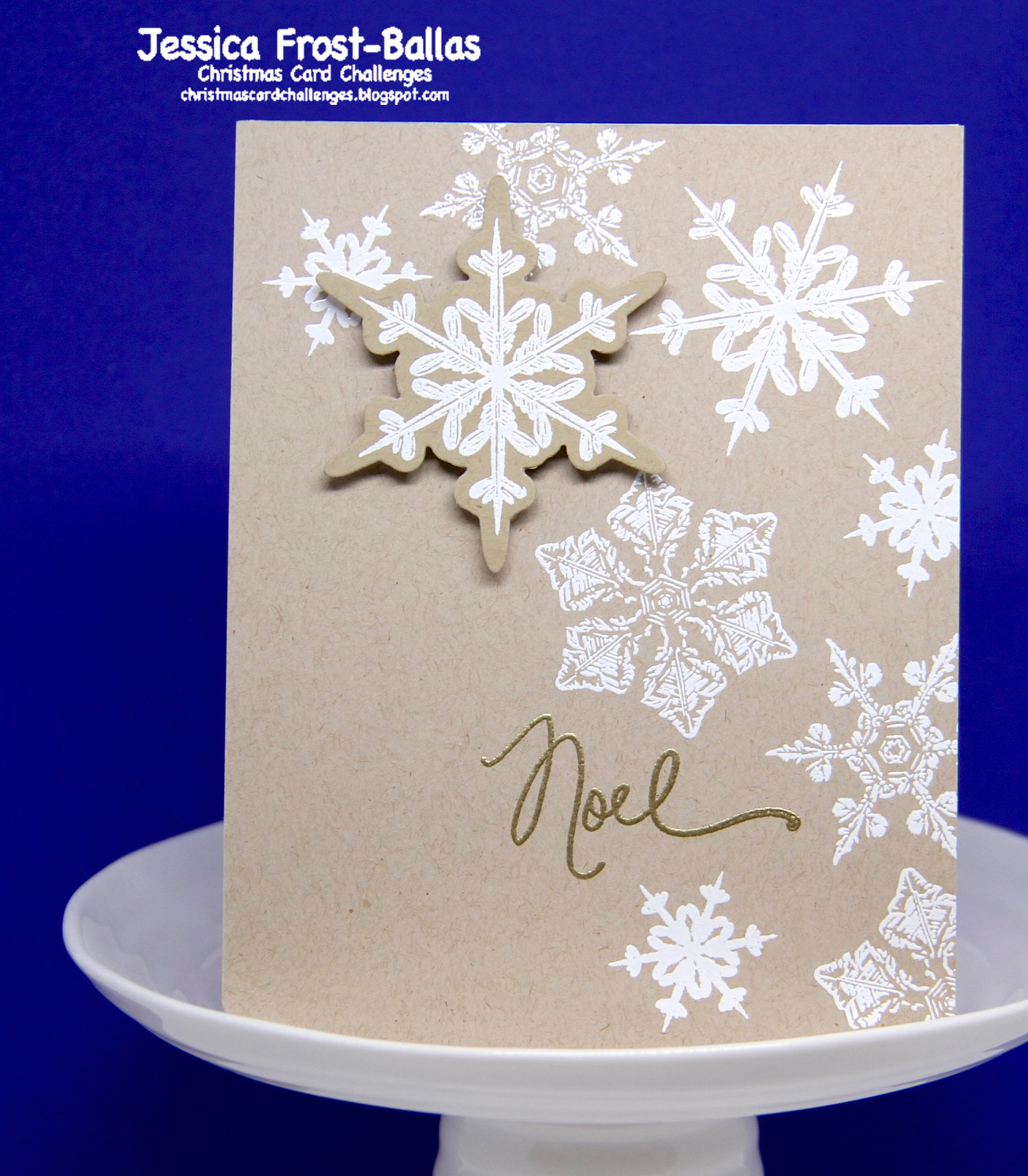 Christmas Card Challenges #16: Photo Inspiration