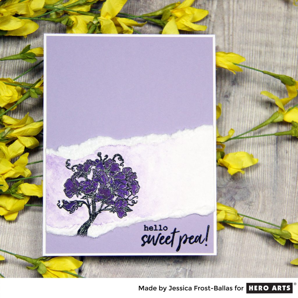 Hello Sweet Pea by Jessica Frost-Ballas for Hero Arts