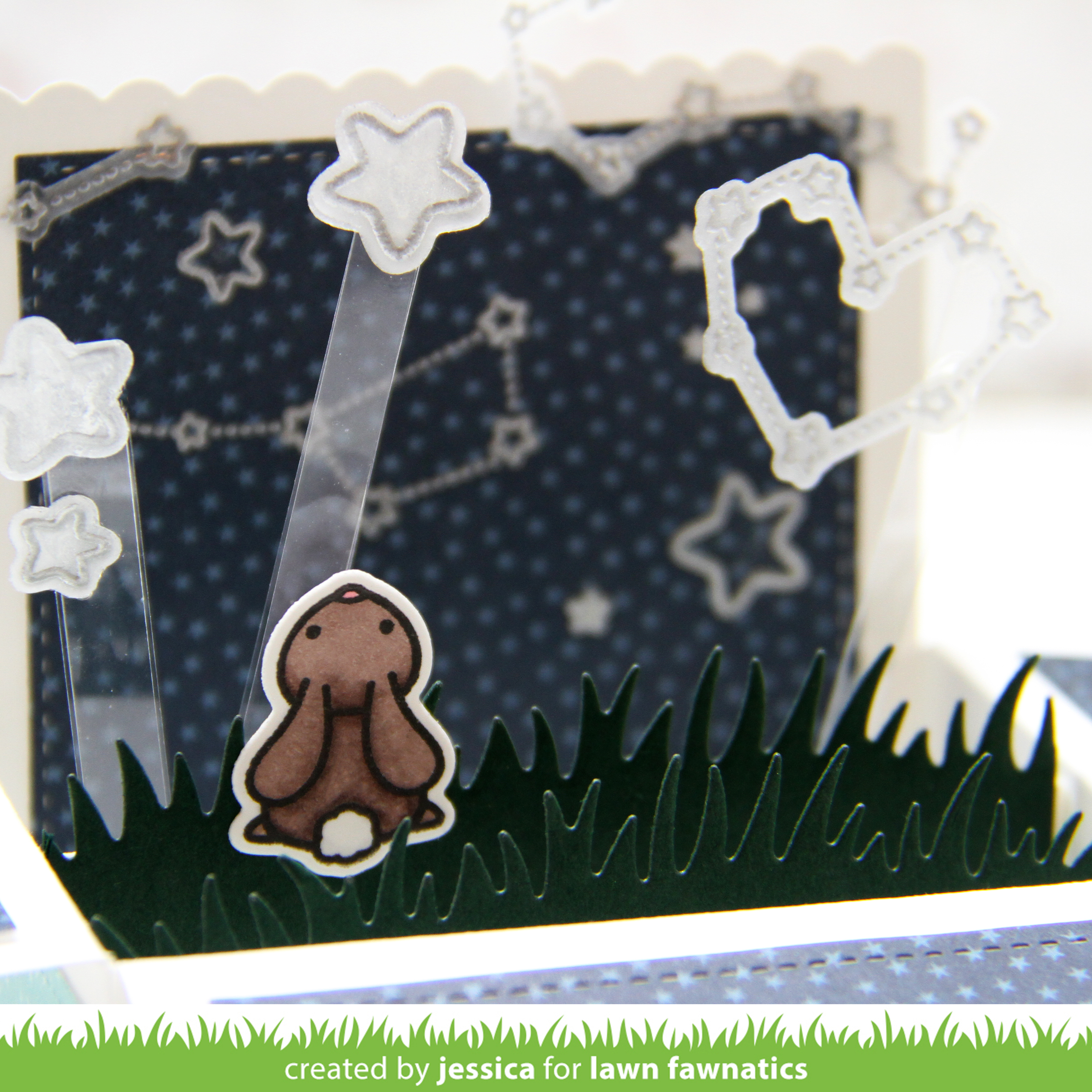 Reach for the Stars by Jessica Frost-Ballas for Lawn Fawnatics