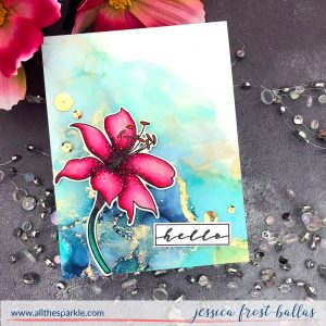 Hello by Jessica Frost-Ballas for Waffle Flower