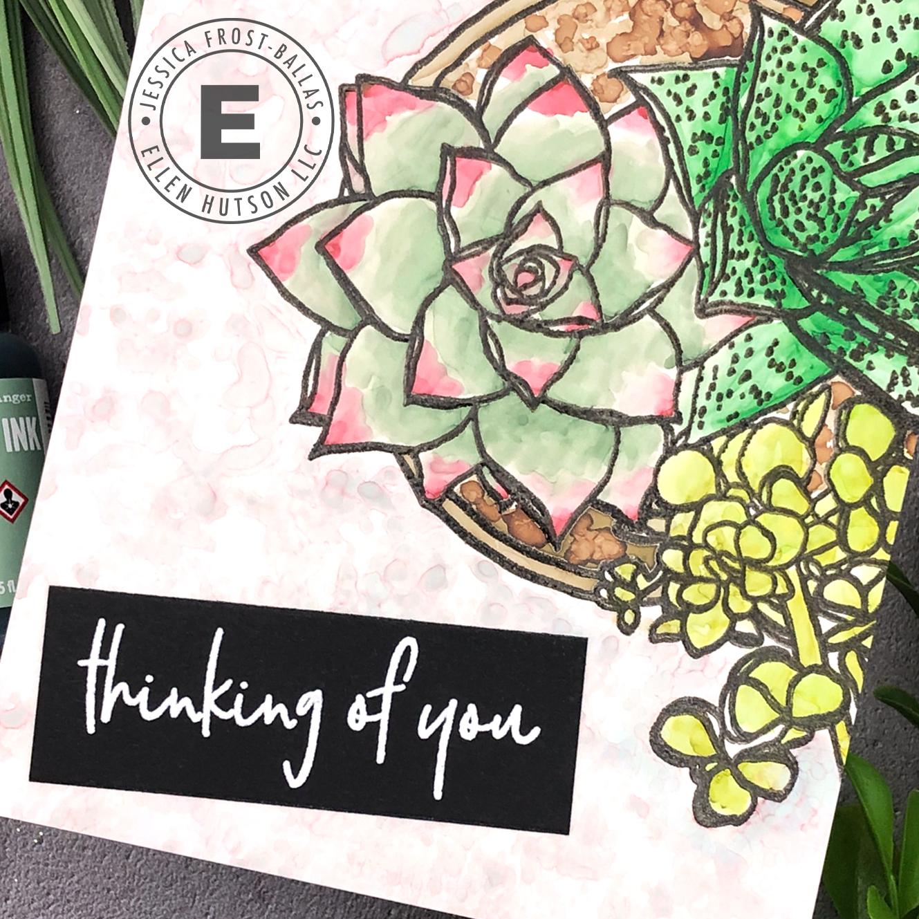 Mondo Succulent by Jessica Frost-Ballas for Ellen Hutson