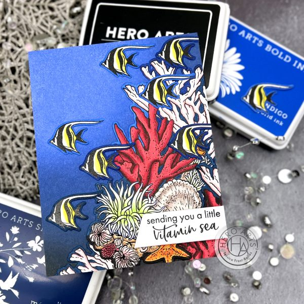 Hero Arts May My Monthly Hero Kit by Jessica Frost-Ballas for Hero Arts