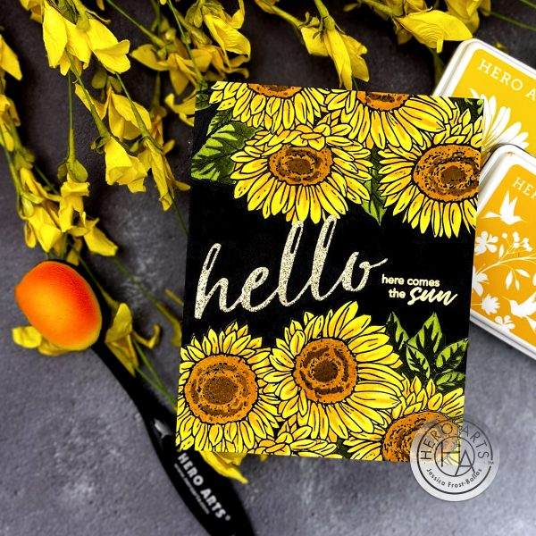 September Hero Arts My Monthly Hero Kit by Jessica Frost-Ballas for Hero Arts